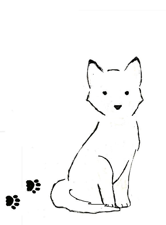 Line Art Dog Tattoo : Husky dog line drawing pixshark images