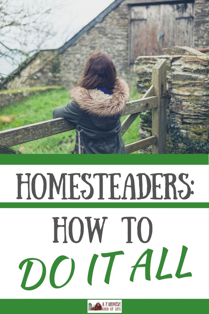homesteaders how to do it all homesteads front yards and gardens
