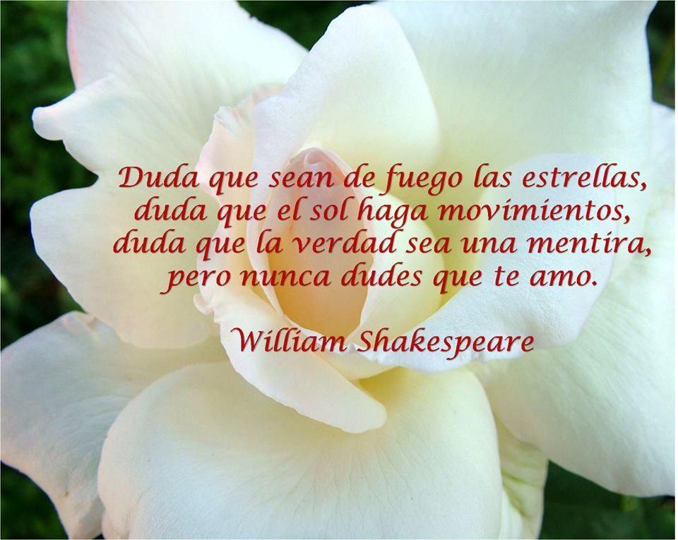 Nunca Dudes Que Te Amo Frases De Amor William Shakespeare
