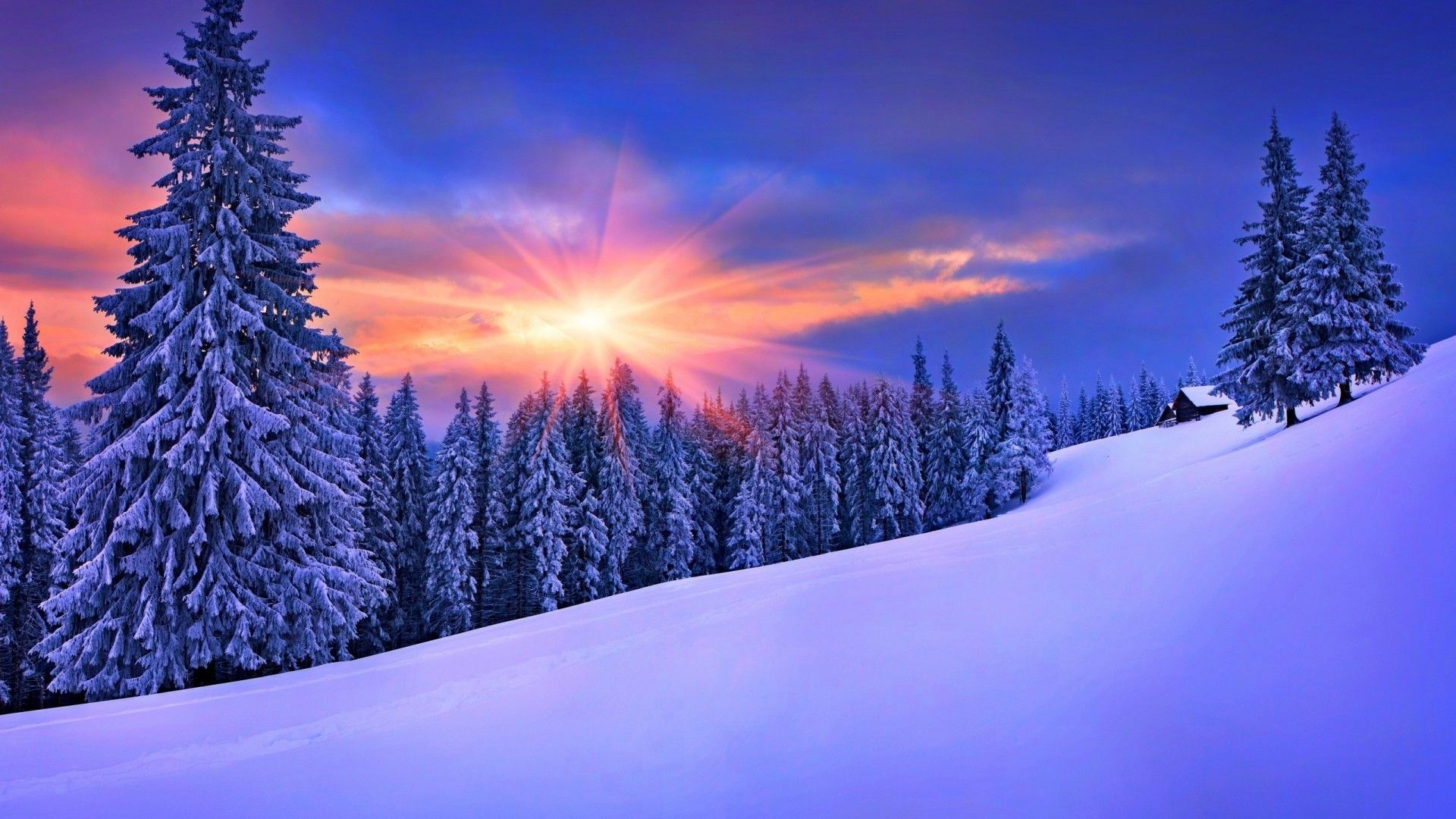 Winter Nature Wallpapers Top Free Winter Nature Backgrounds Wallpaperaccess Landscape Wallpaper Winter Desktop Background Scenery Wallpaper
