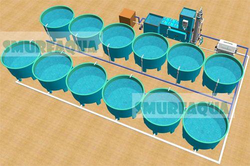 Indoor fish farm design/RAS/Recirculation aquaculture system