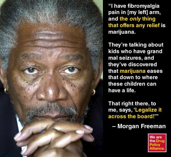 Morgan Freeman Shoots Straight: On Legalizing Marijuana and His Escape From New York 40b2578c20f34ab8b1188bbd33f14201
