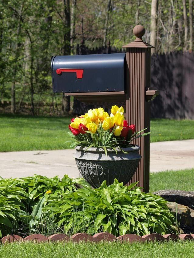 Simple Mailbox With Flower Planter General Landscaping