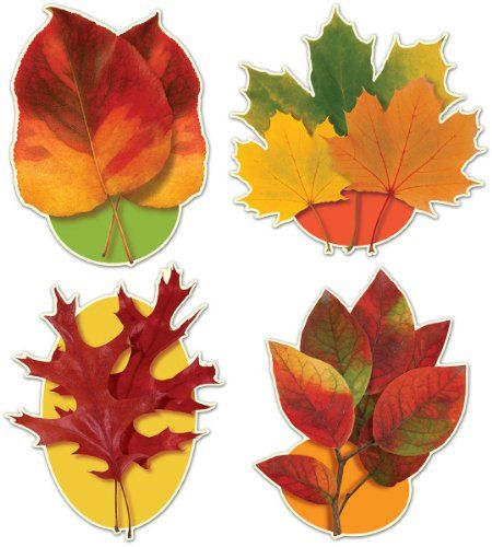 Fall/Thanksgiving Packaged Autumn Leaf Cutouts [60 Pieces] *** Product Description: Recreate The Mood Of The Autumn Season With These Captivating And Charming Packaged Autumn Leaf Cutouts. They Are Best For Thanksgiving Party Decorations. Size: 1 *** - http://www.specialdaysgift.com/fallthanksgiving-packaged-autumn-leaf-cutouts-60-pieces-product-description-recreate-the-mood-of-the-autumn-season-with-these-captivating-and-charming-packaged-autumn-leaf-cutouts-they-are-be/