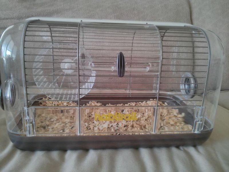 Kijiji Cage Habitrail retreat. 30 hamster Pinterest