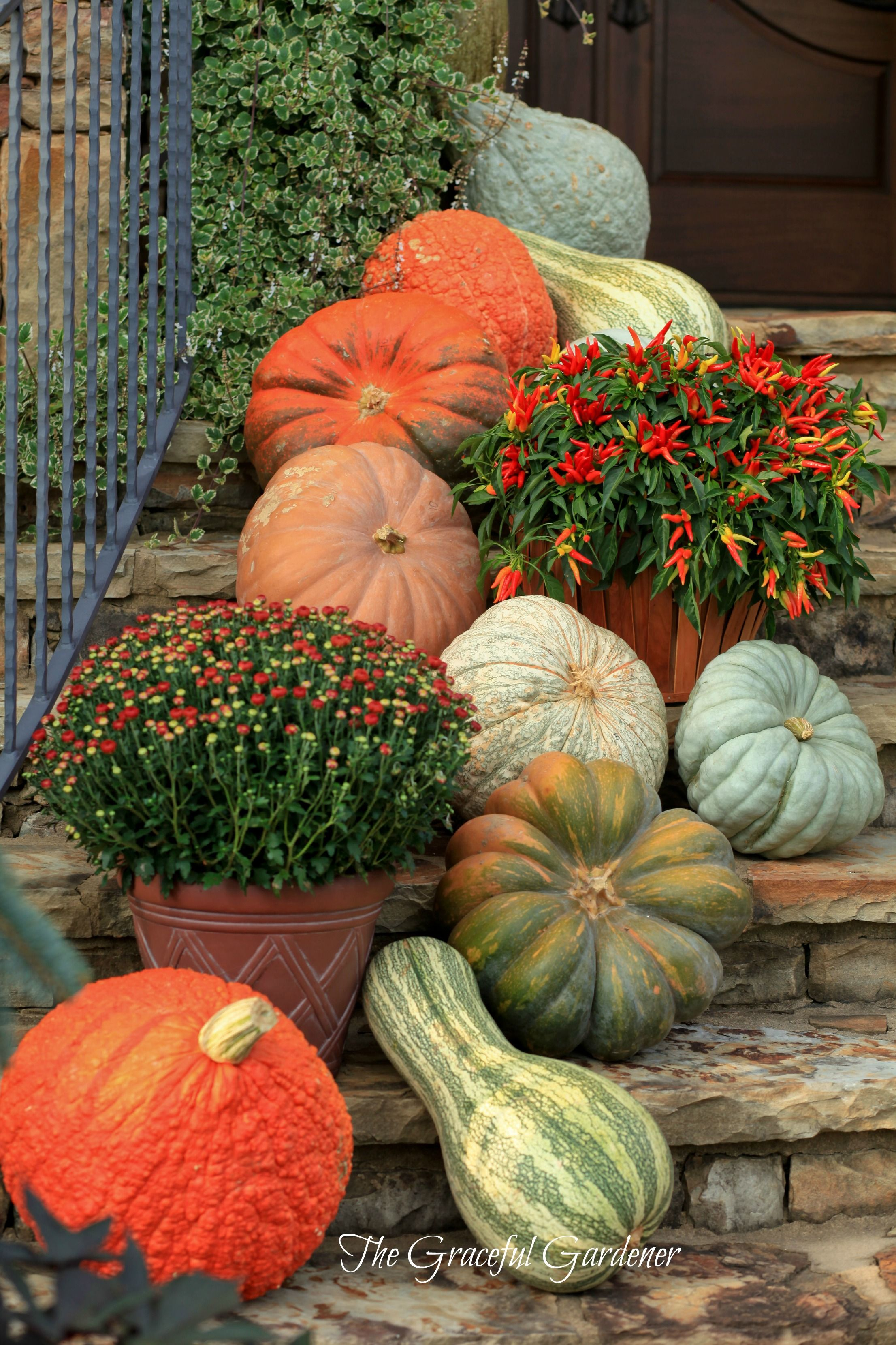 Pretty fall porch steps halloween pinterest