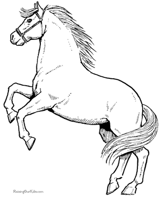 Schone Ausmalbilder Pferde Ausmalbilder Pferde Ausmalbilder