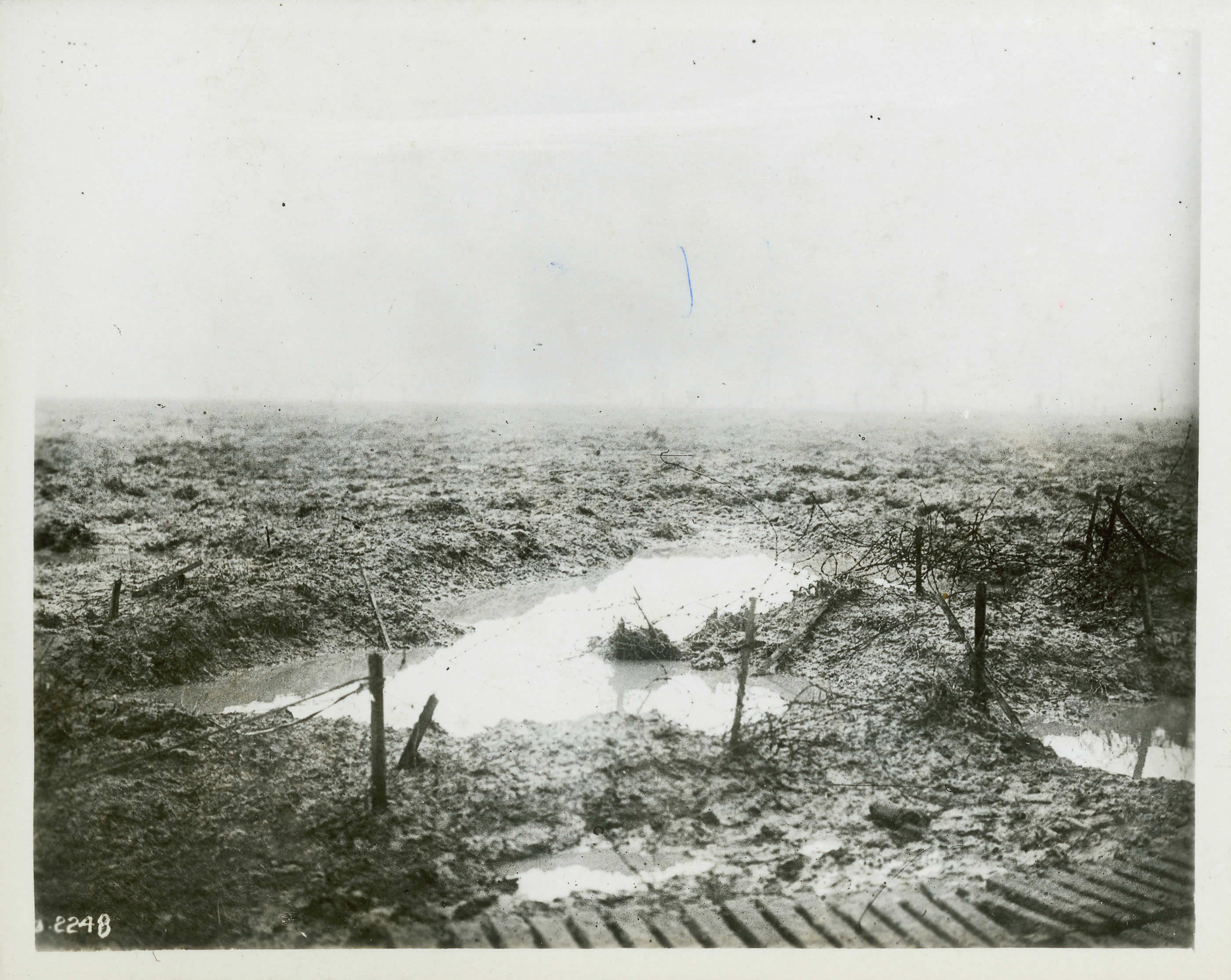 A map of trenches at Passchendaele, showing Wolf Copse, Woodland ...