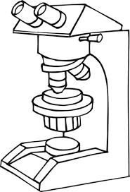 Resultado De Imagen Para Un Microscopio Y Sus Partes Animado Para Colorear Microscopic Biology Art Clip Art