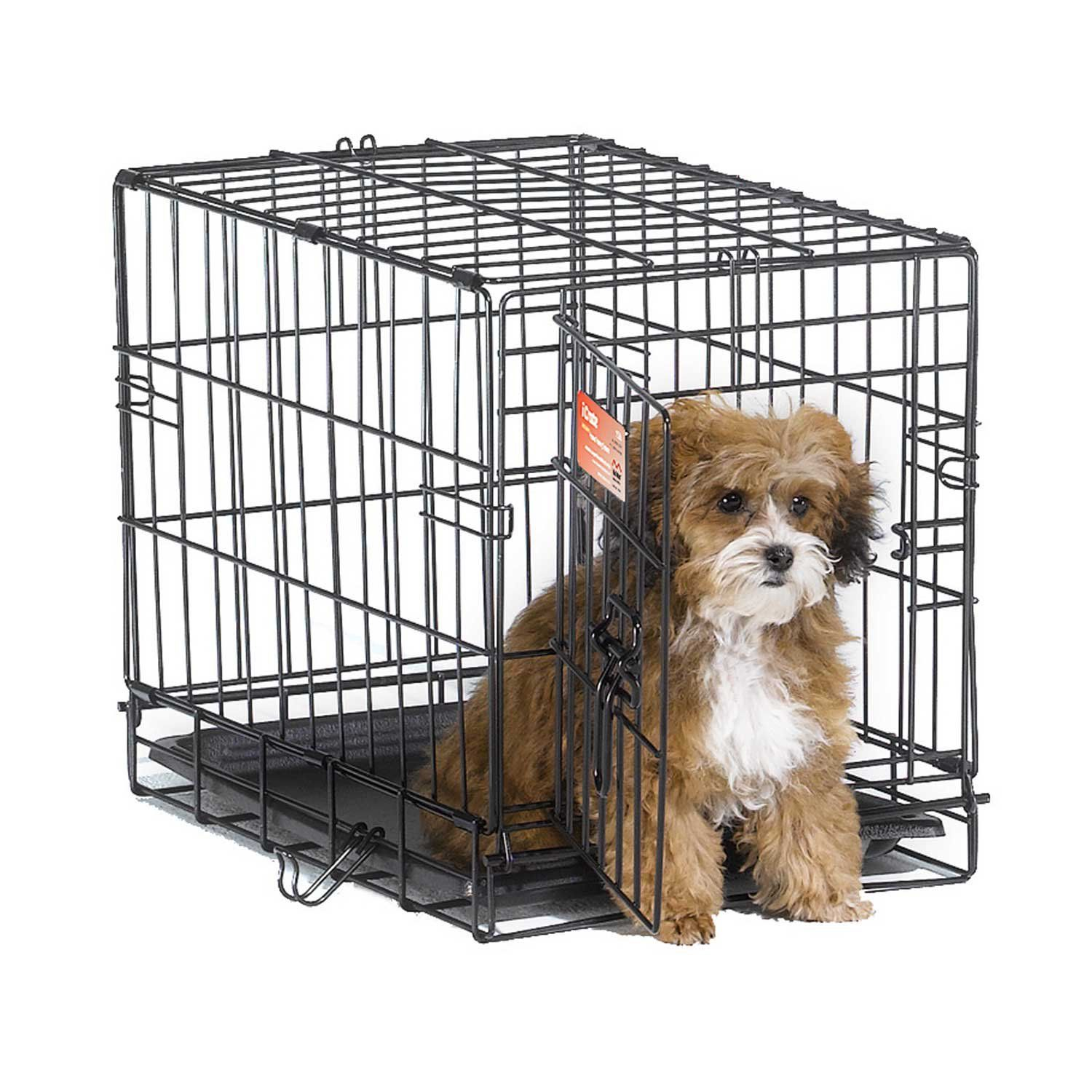 Midwest Icrate Single Door Folding Dog Crate 36 L X 23 W X 25 H Cheap Dog Cages Small Dog Cage Folding Dog Crate
