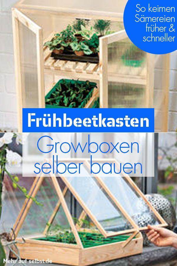Frühbeetkasten selber bauen| selbst.de