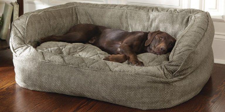 Dog Sofa Bed Costco Hondenbedden Honden Kamers Hondenspullen