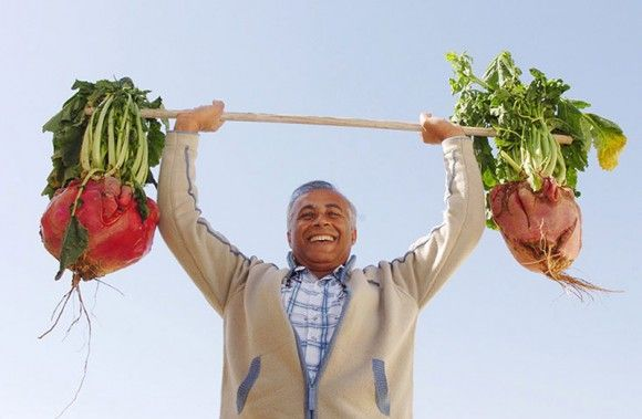 Radishes, each of which weighs 10 kg.