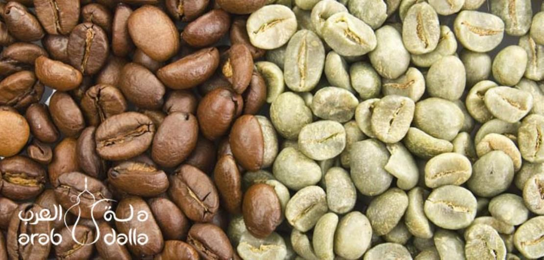 All You Need To Know About Arabica Coffee Beans Arabica Coffee Coffee Plant Arabica Coffee Beans