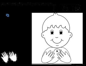 I cinque sensi schede didattiche schede e stampa for I cinque sensi maestra mary