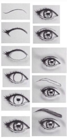 Wire Model Of Human Eye