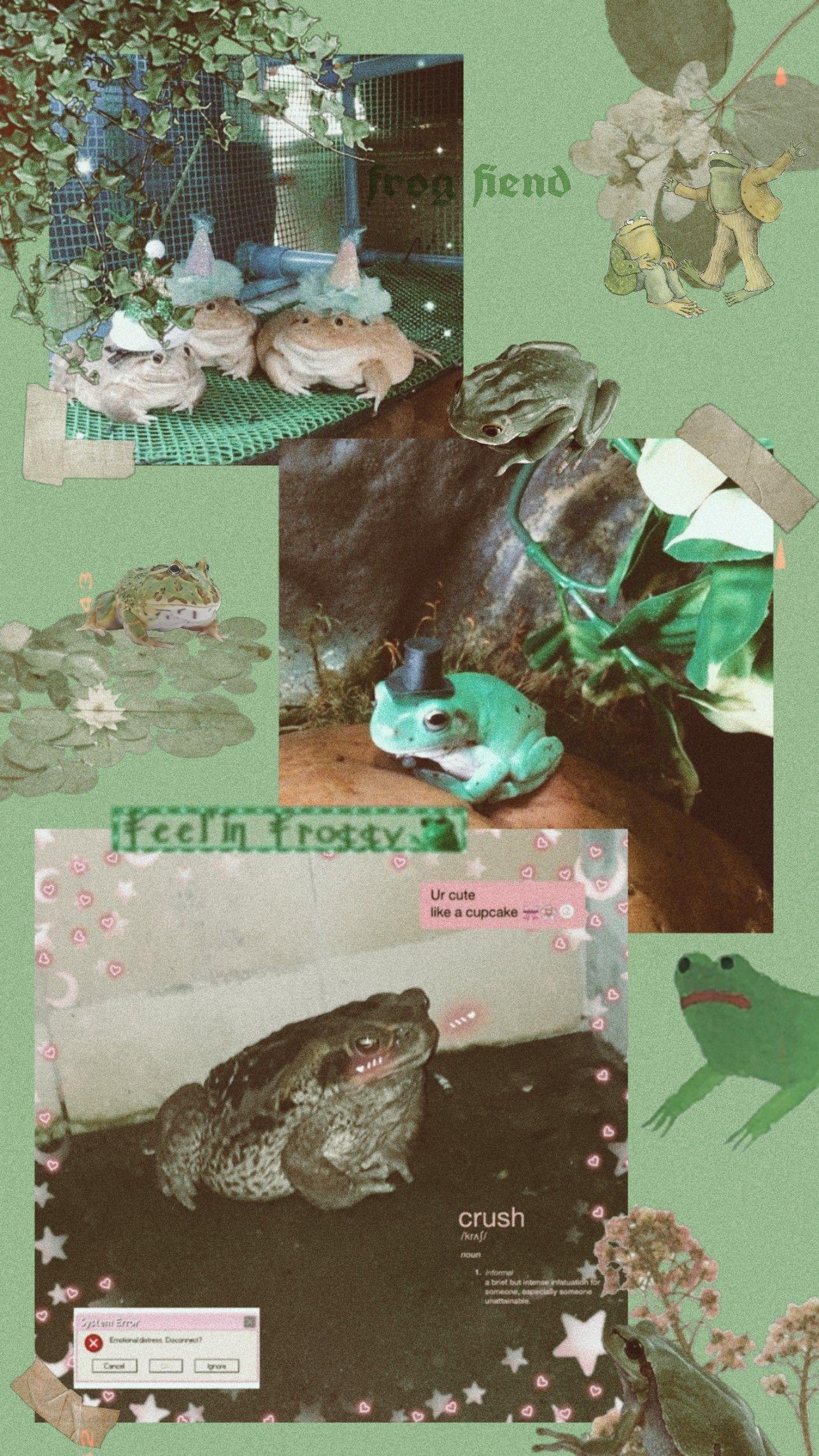 Frog Wallpaper Frog Wallpaper Frog Pictures Frog Art Cute aesthetic sticker indie kid filter hot pink laptop wallpaper. frog wallpaper frog pictures frog art