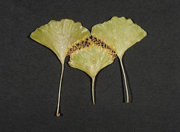 Folhas bordadas Hillary Fayle
