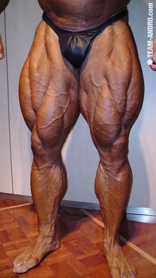 Resultado de imagen para leg muscles bodybuilding ...
