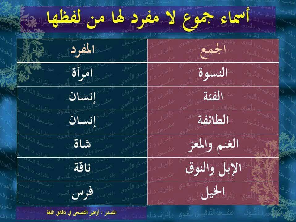 جموع لا مفرد لها من لفظها Learn Arabic Language Arabic Language Learning Arabic