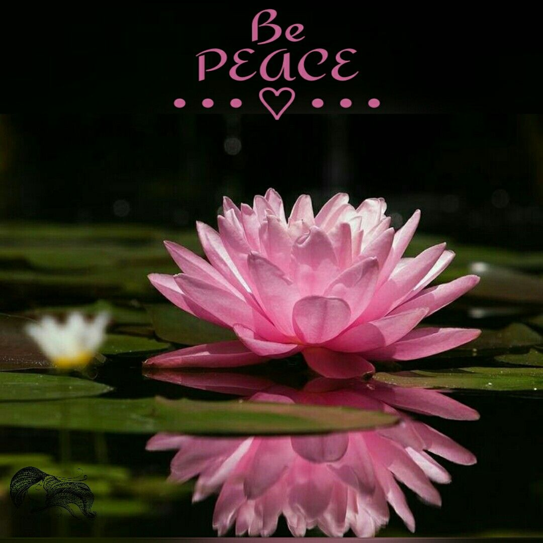 Be Peace ༺♡༻ WILD WOMAN SISTERHOOD™ wildwomansisterhood