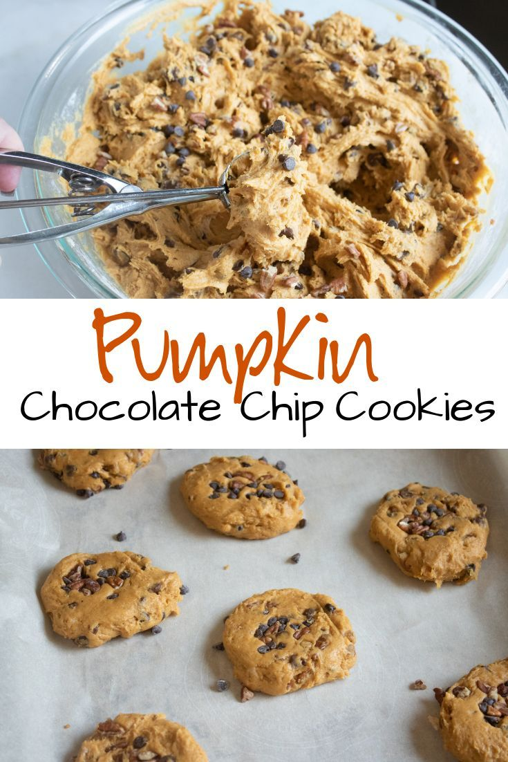 Monster Pumpkin Chocolate Chip Cookies Moist and delicious with rich pumpkin flavor these pumpkin chocolate chip cookies are the perfect after school snack or anytime tre...