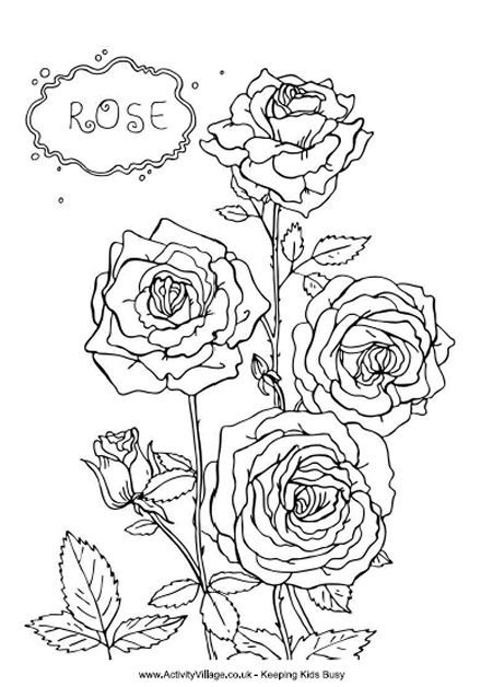 Pin By Ashley Wernert On Coloring Pages Flower Coloring Pages Rose Coloring Pages Mandala Coloring Pages