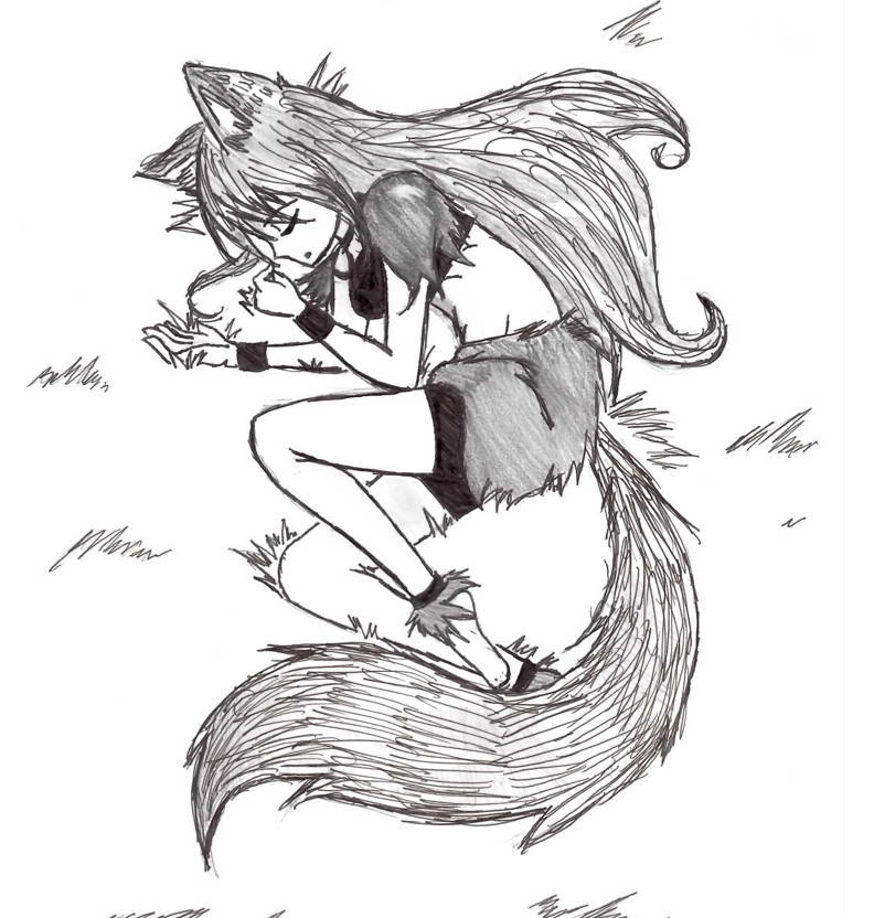 Wolf Girl By Akachan Okami On Deviantart With Images Anime Wolf Girl Anime Wolf Wolf Ears