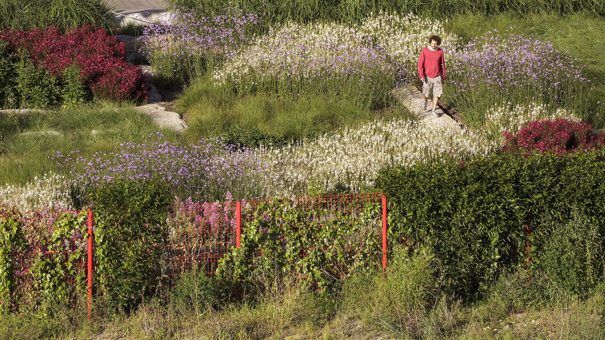 Gael Atelier lea atelier | landscape ecology architecture, gael del río · ninot