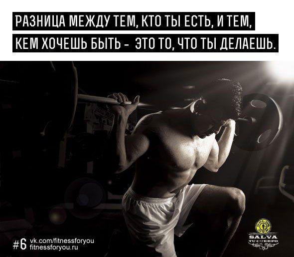Motiviruyushie Citaty Pro Sport I Zdorove Velikih Lyudej