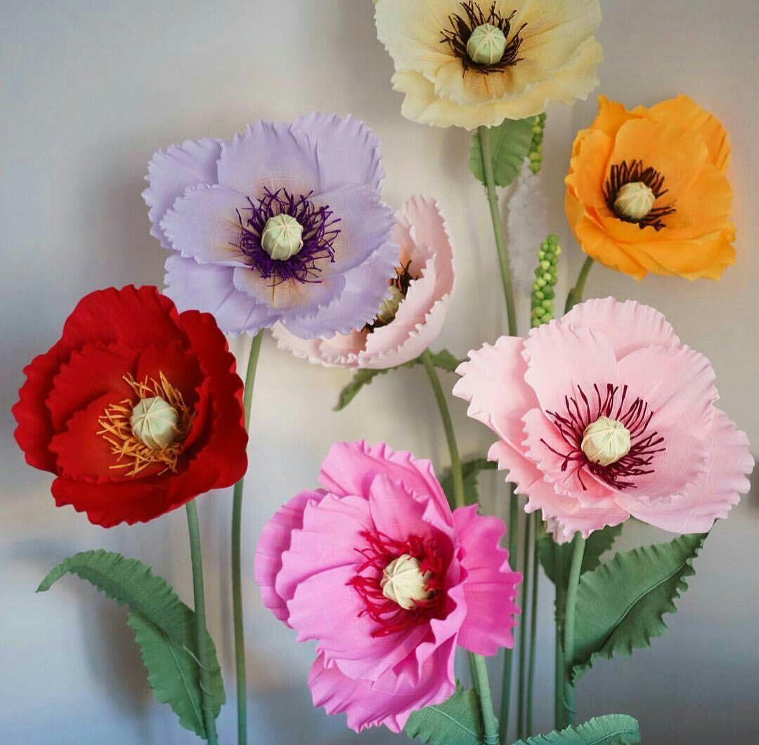 Papaveri Di Carta Crespa pin di lady flowers su papaveri | fiori di carta fai da te