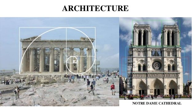 The Golden Ratio In Architecture Fascinating Nothredam Golden Ratio  Google Search  Classic Interior Design . Decorating Design
