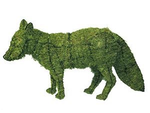 Moss fox topiary - or just frame w/o moss (http://www.rittenhouse.ca/asp/Product.asp?PG=250) Place near the arbor?