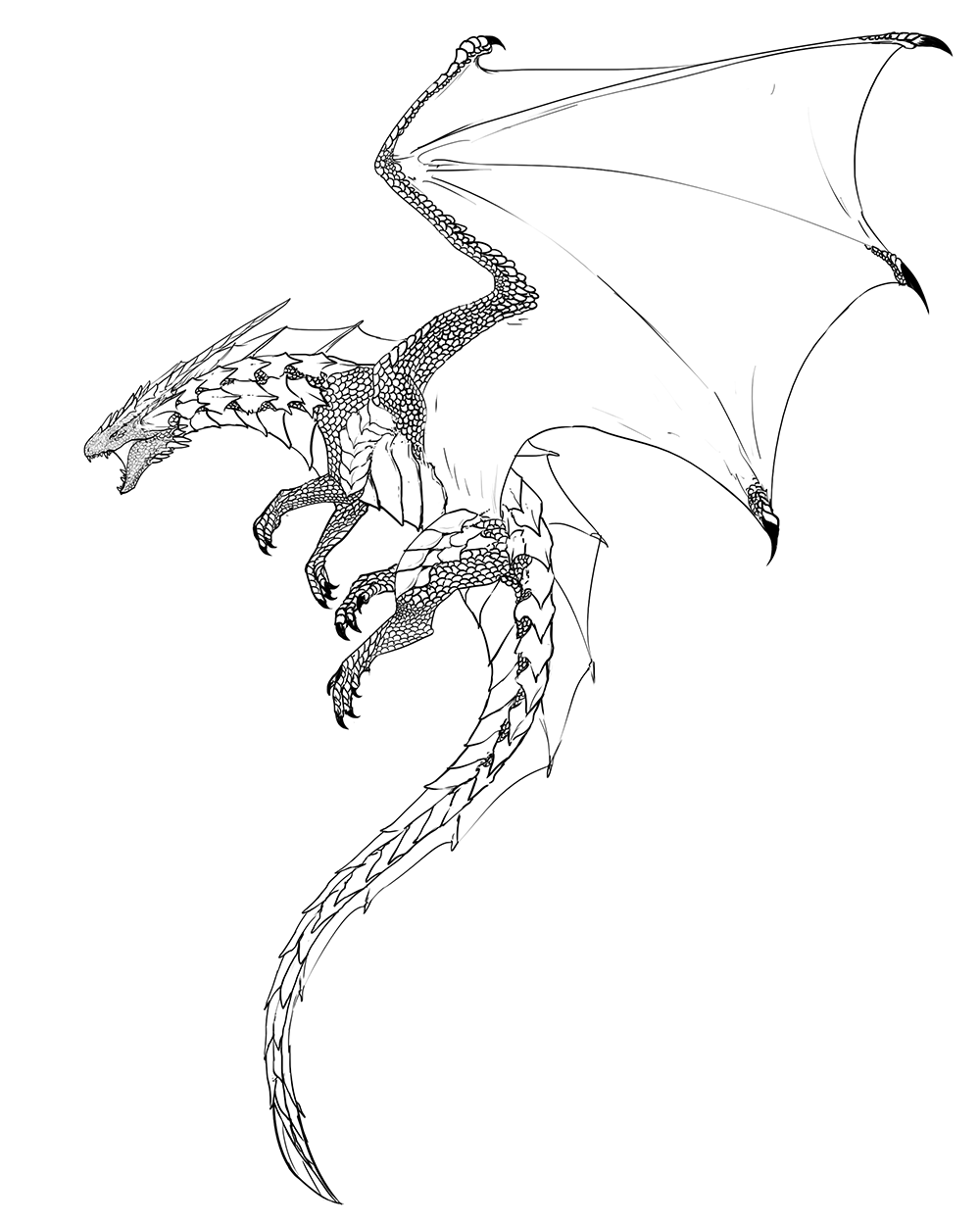 Enter the LAiR — gauntes: dragon lineart | DRAGONS ...