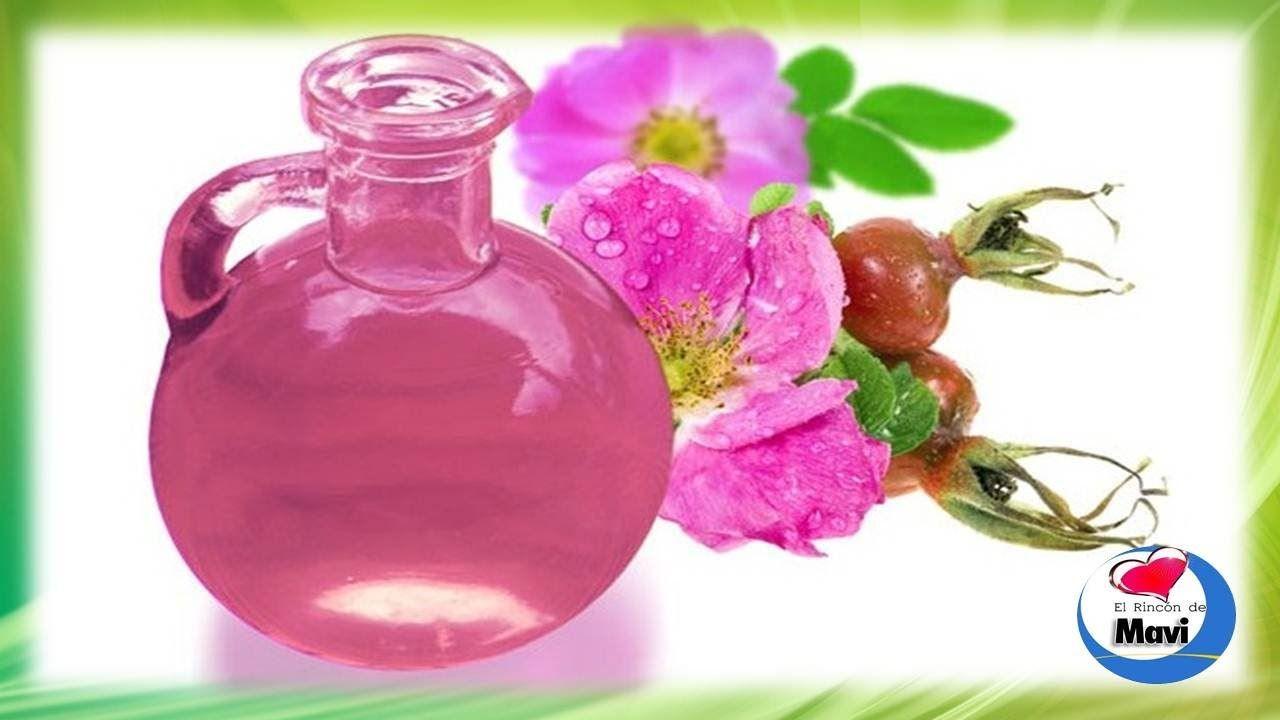 Mosqueta aceite de usos del rosa