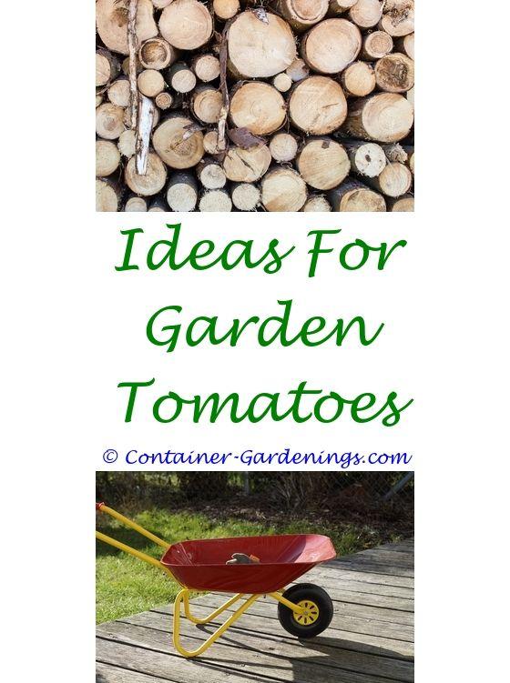 tip with gift card olive garden - garden bed border ideas.summer ...