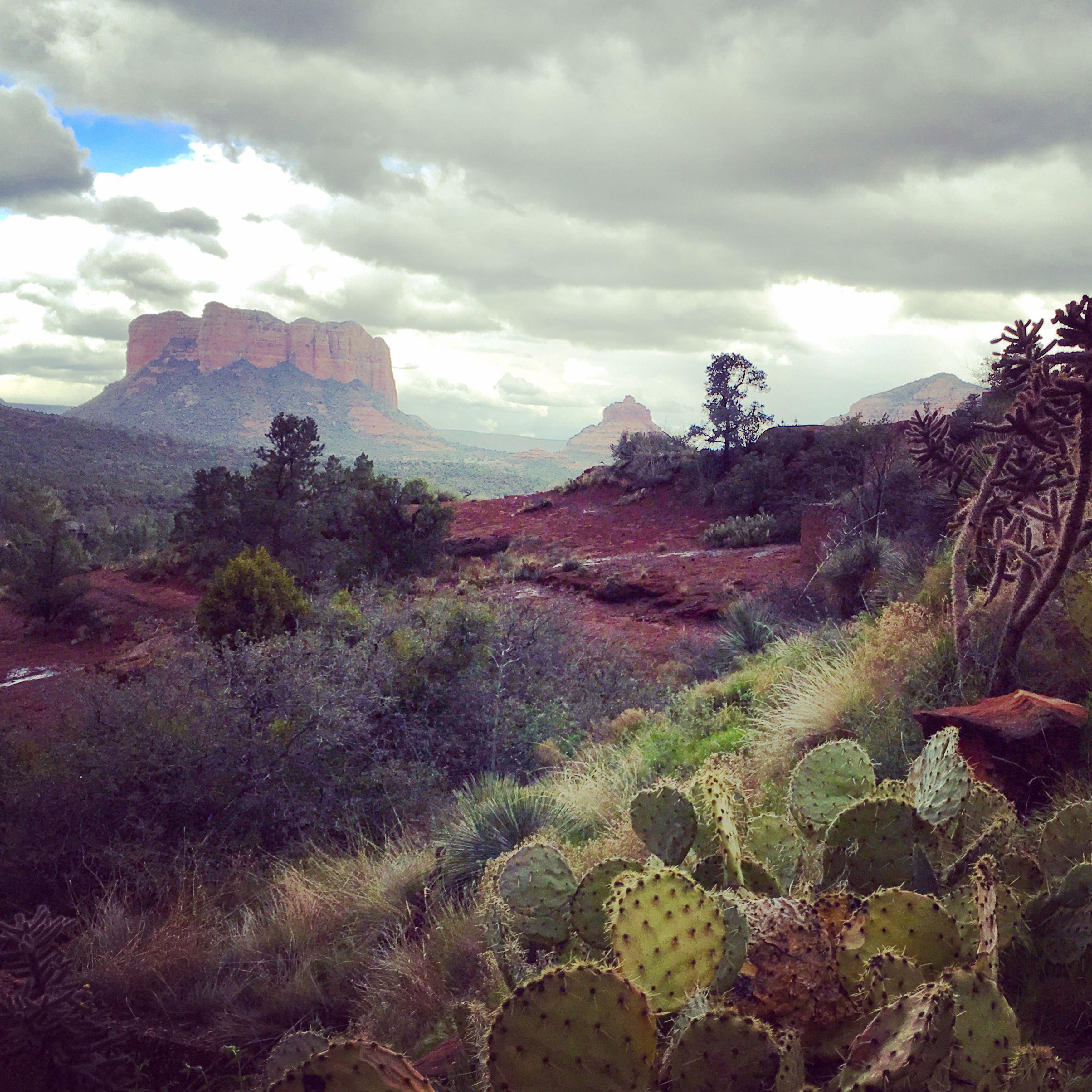 Red Rock Sedona Arizona [OC][35003500] #reddit