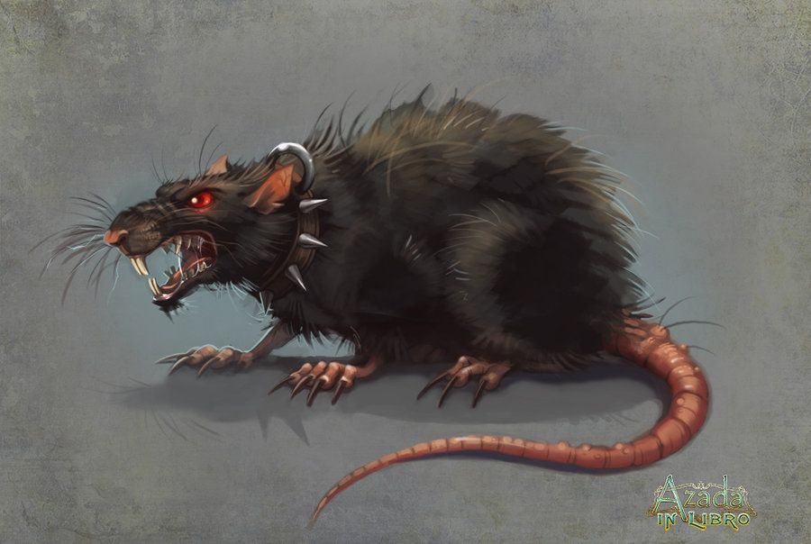 Evil Rat by Okha.deviantart.com on @deviantART | Rats, Rat ...