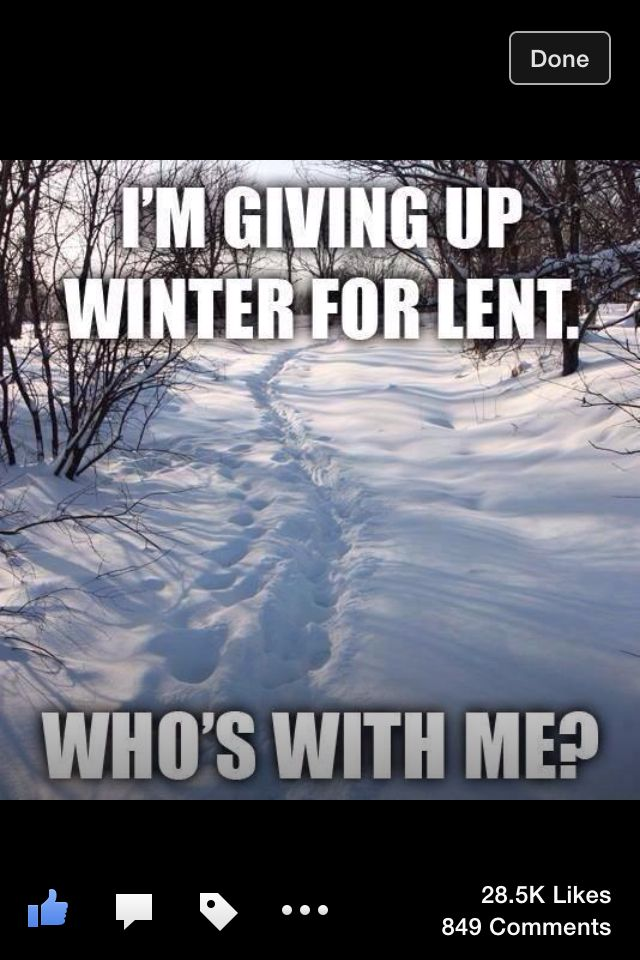 Minnesota Winters Winter Humor Funny Winter Quotes Cold Weather Funny
