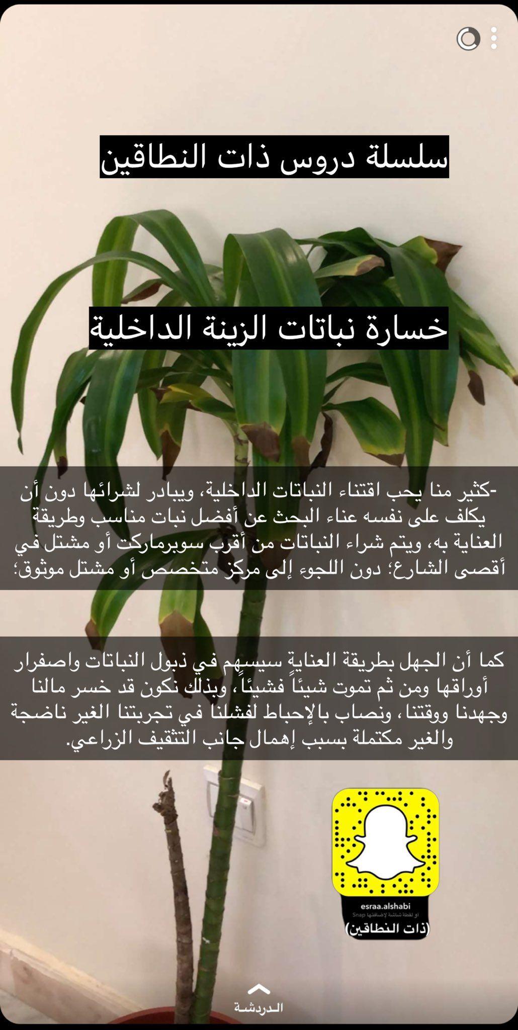 ذات النطاقين On Twitter Coffee Pictures Plants Application Iphone
