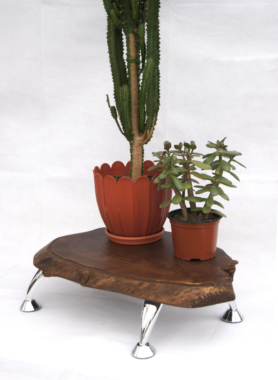 Large Wooden Plant Stand Indoor Live Edge Wood Slab Planter Stand Tree Stump Stand Pedestal Fern Stand Rustic Plant Holder Flower Pot Base