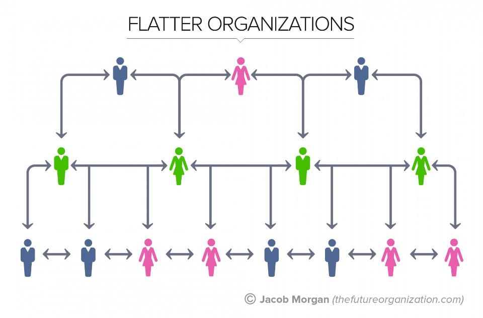 The  Types Of Organizational Structures Part  Flatarchies