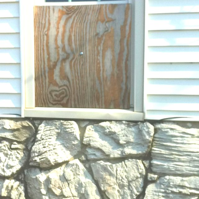 Wood grain and stone