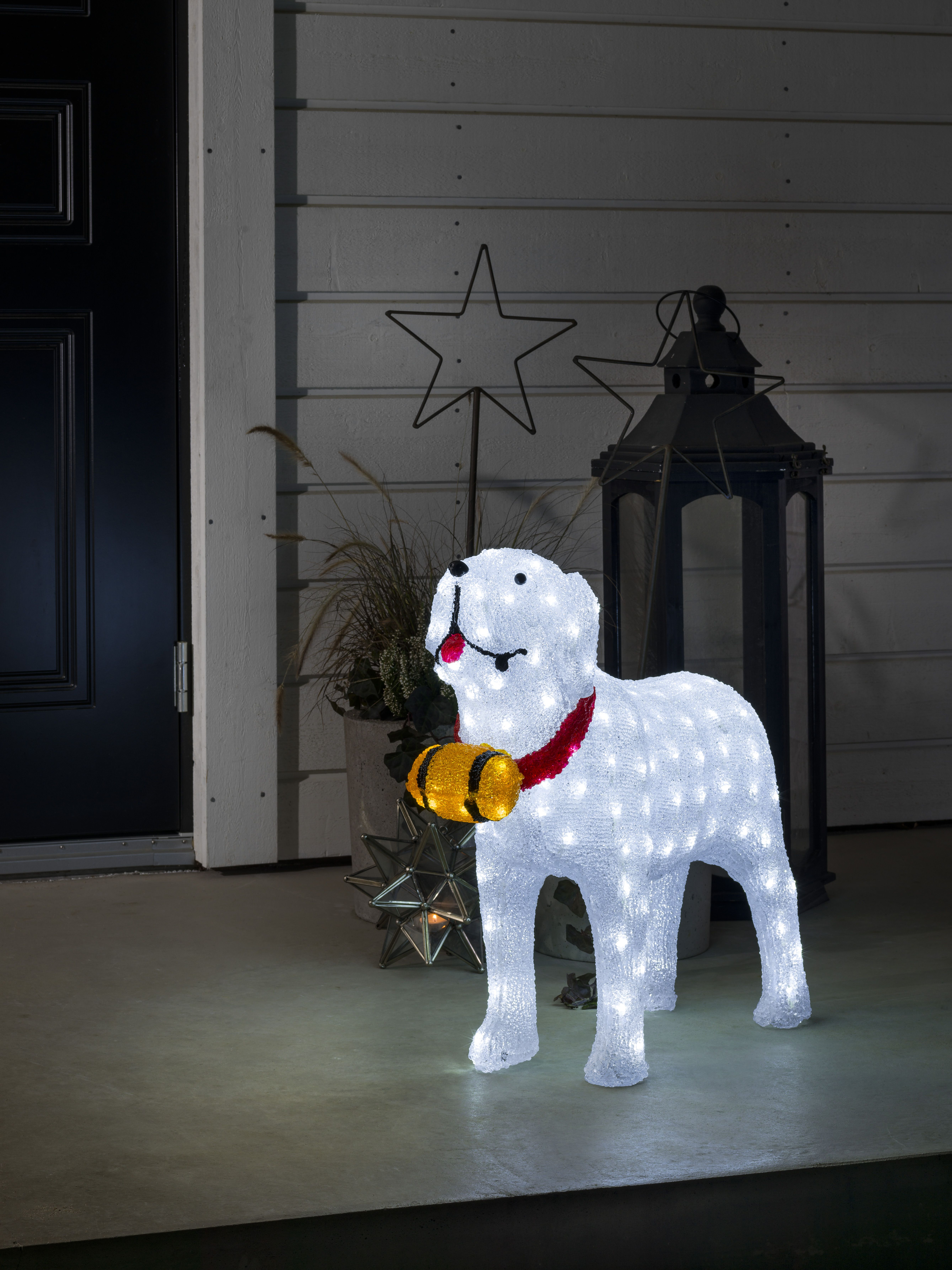 10 Outdoor Dog Christmas Decorations