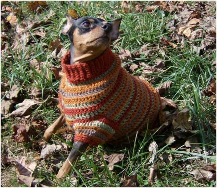 Crochet Dog Sweaters (Free Crochet Patterns & Video Tutorials ...