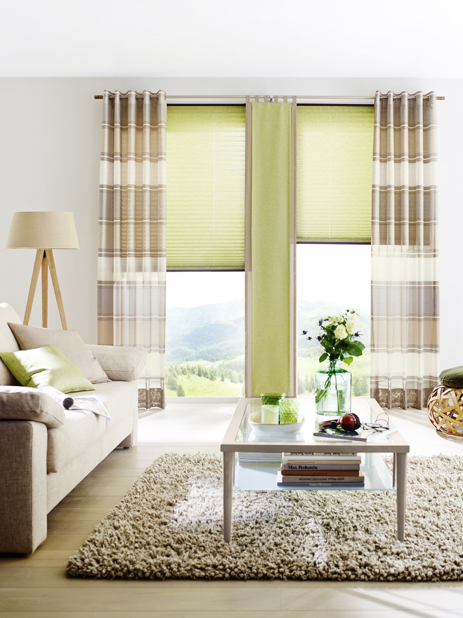 fenster rollos plissee dsc window blinds halifax from in blackout shades plissee skylight with. Black Bedroom Furniture Sets. Home Design Ideas