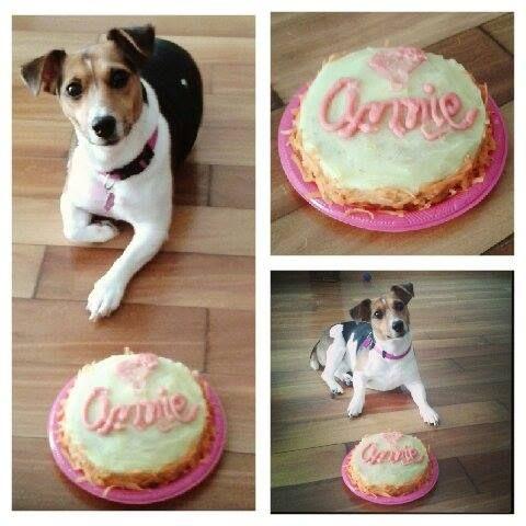 Hermosa la dulce Annie.  Gerente General de nuestros patas de Platos Ánitz.  Feliz con su torta.  :)