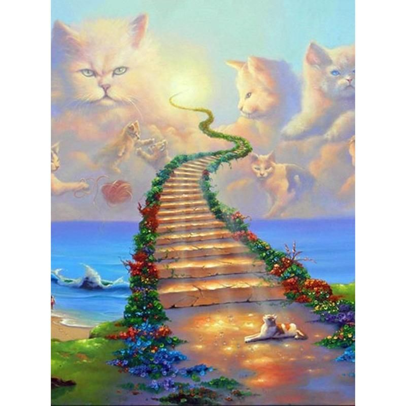 Stairway To Cat Heaven Diamond Painting Cat Heaven Rainbow Bridge Warrior Cats