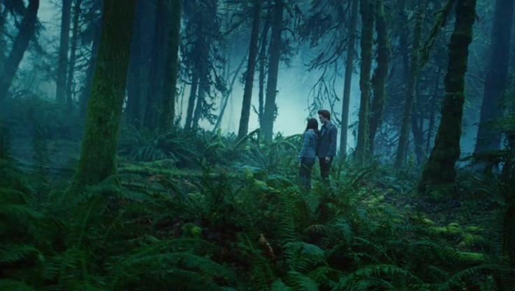 Twilight-Edward & Bella take a walk