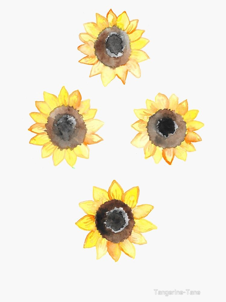 Cheerful Watercolor Sunflowers Sticker By Tangerine Tane In 2020
